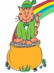 st paddy day cat1