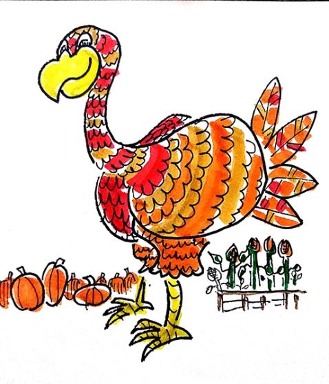 turkey day1